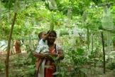 Mutter mit Kind beim Ernten